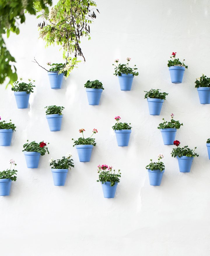 Terracotta pot vertical garden wall © ANGELA ARCHILLA