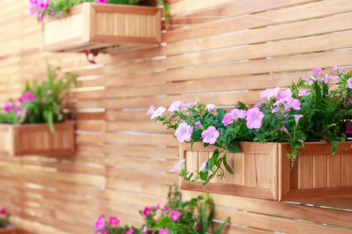 Wood window boxes make a vertical garden ©PRASERT - stock.adobe.com