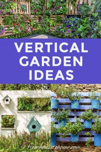 Vertical flower garden ideas