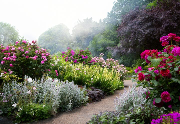 Layers of flowers in an English garden ©Konstiantyn - stock.adobe.com