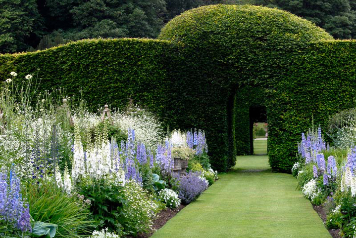 Blue and white flower garden color scheme at Levens Hall