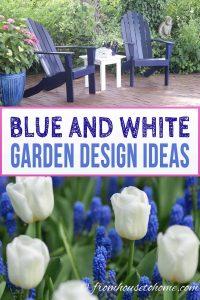 Blue and white flower garden color scheme