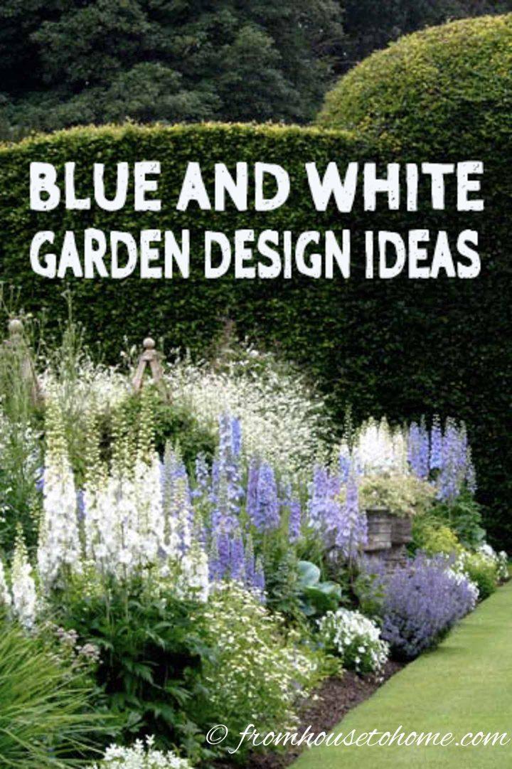 Blue and white garden design