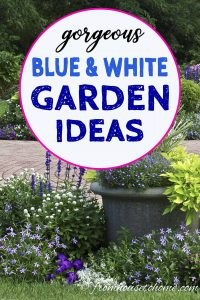 Blue and white garden ideas
