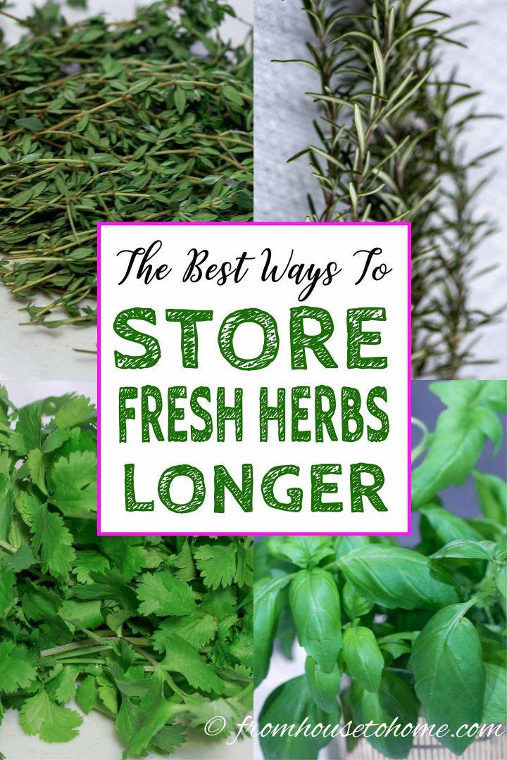 How to store fresh herbs longer