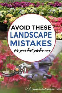 landscaping mistakes to avoid