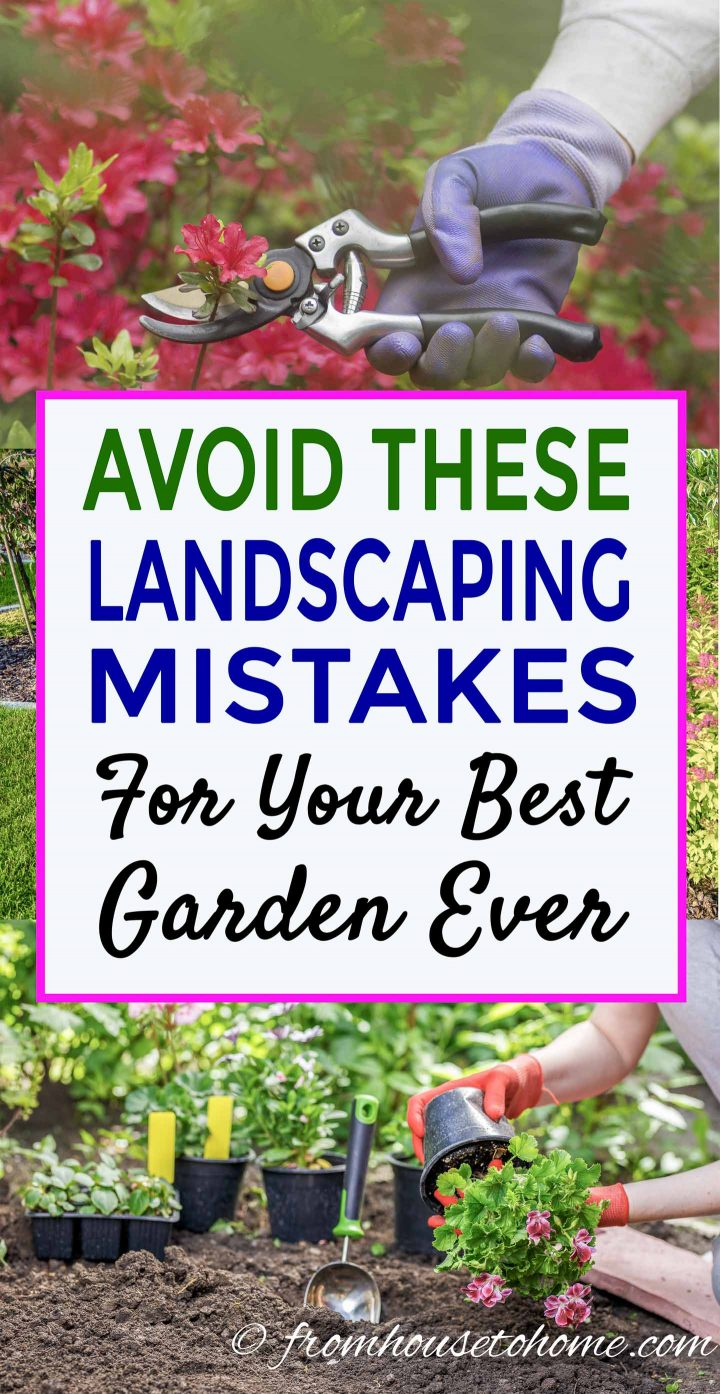 Landscaping Mistakes To Avoid For Your Best Garden Ever