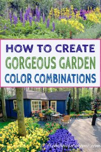 How to create gorgeous garden color combinations