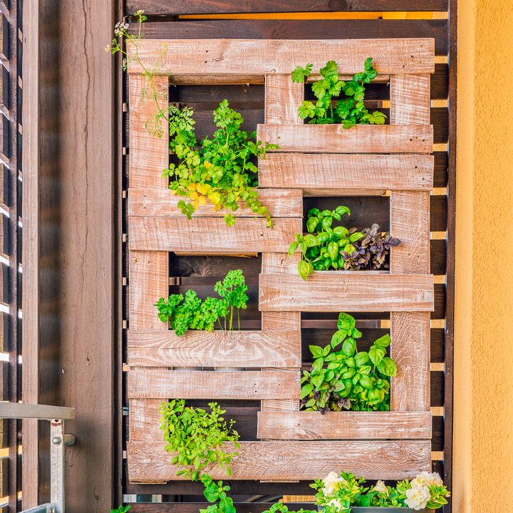 Vertical Herb Garden Ideas: 7 Creative Ways To Plant A Vertical Herb Garden