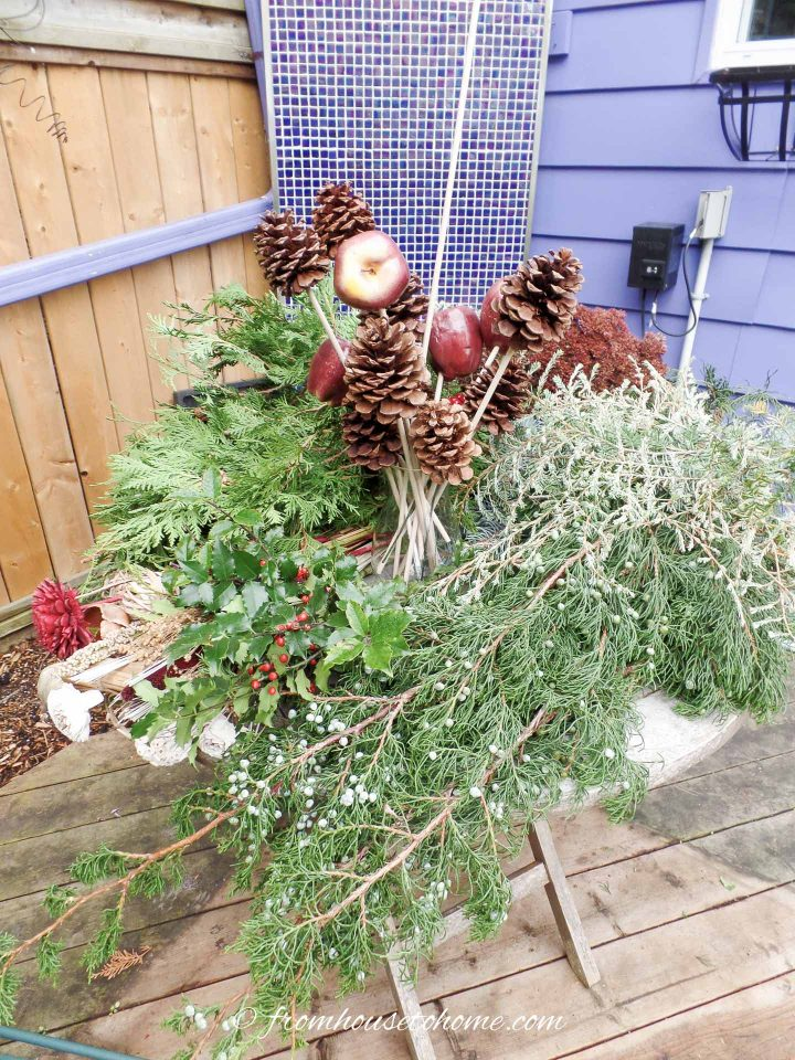 Evergreen branches and dried flower supplies for winter window boxes