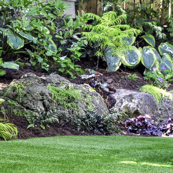 Hillside shade garden with large boulders, ferns and Hostas ©Joanne Dale - stock.adobe.com