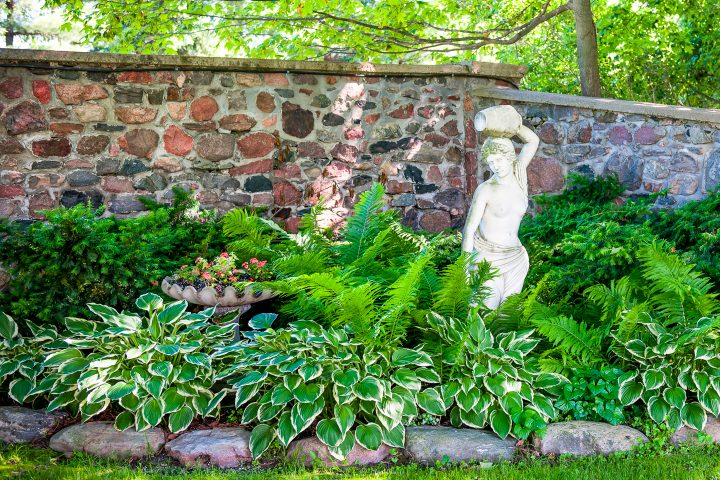 Hostas planted with ferns surrounding a statue and a container with impatiens