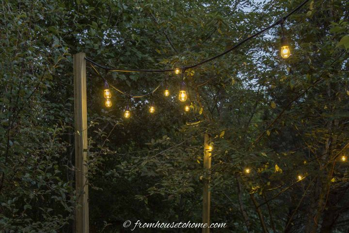 A string of Edison-style light bulbs hung in the garden