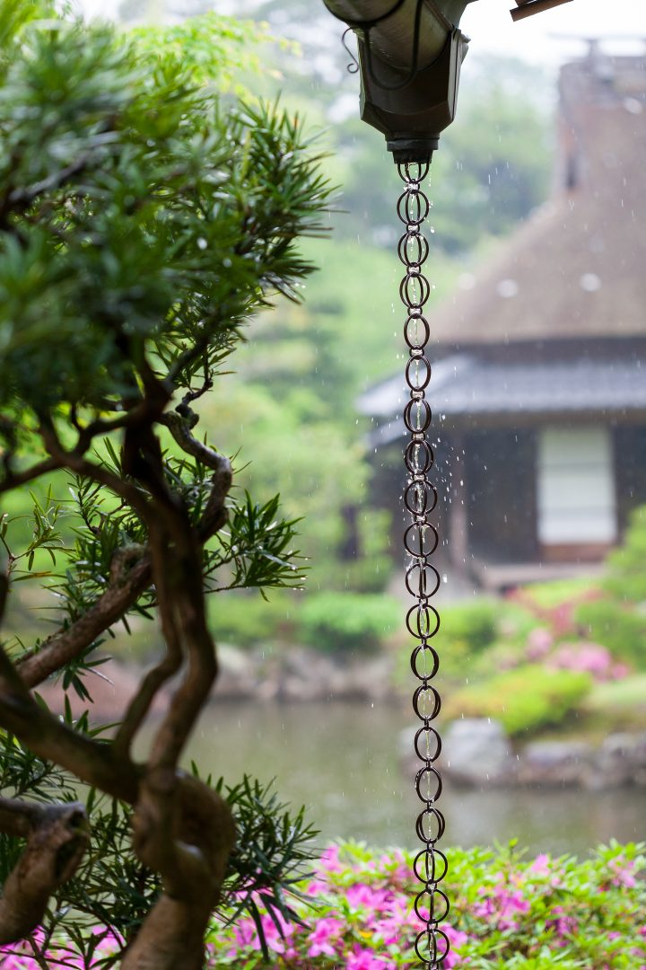 Rain chain in a Japanese garden ©Anthony Brown - stock.adobe.com