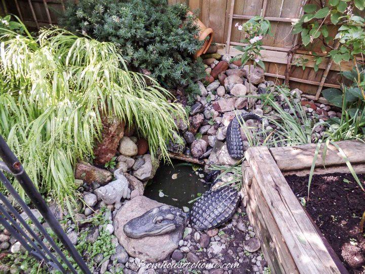 Alligator garden art beside the DIY waterfall water feature