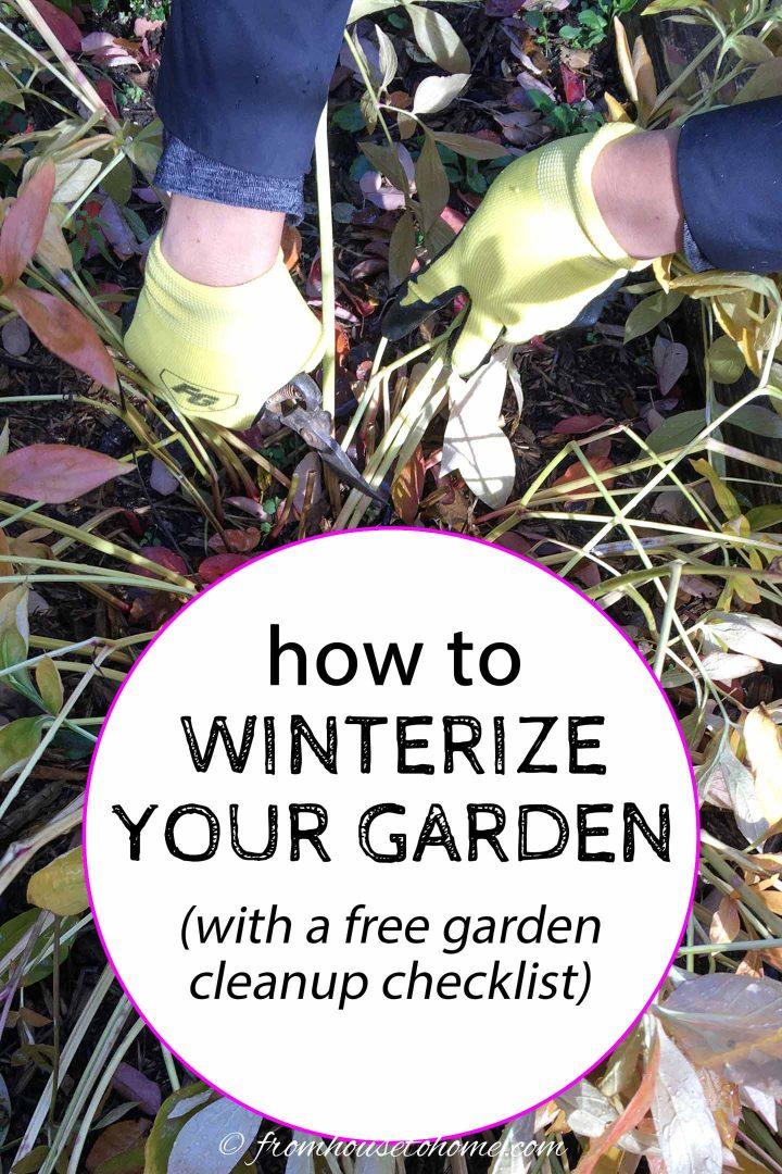 Como preparar seu jardim para o inverno (com uma lista de verificação de limpeza do jardim no outono)