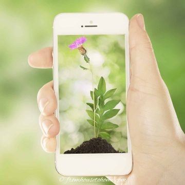 gardening app open on a cell phone