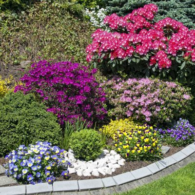 flower garden with blooming shrubs and perennials