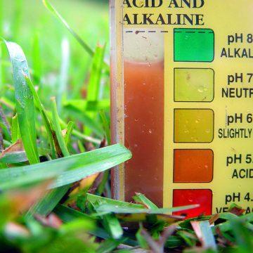 what is soil pH