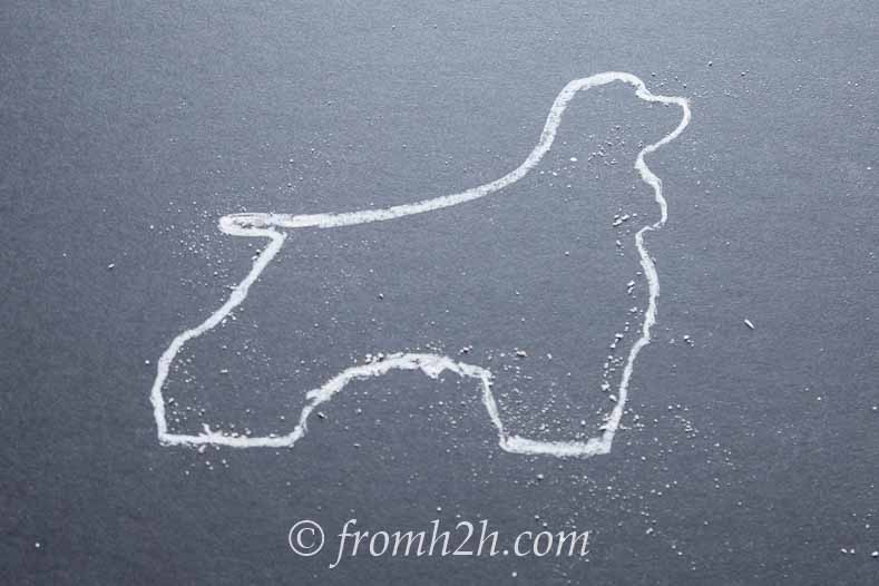 Use chalk to outline the silhouette on the construction paper