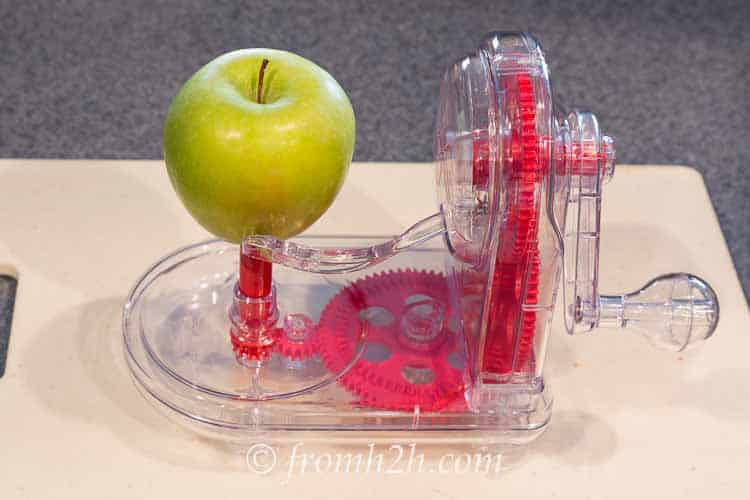 Place the apple on the spikes | Inexpensive Kitchen Gadgets That Make Cooking Easier
