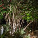8 Dramatic Landscape Lighting Effects