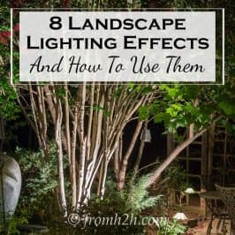 Landscape Lighting Effects: 8 Dramatic Outdoor Lighting Ideas You Must Try In Your Garden