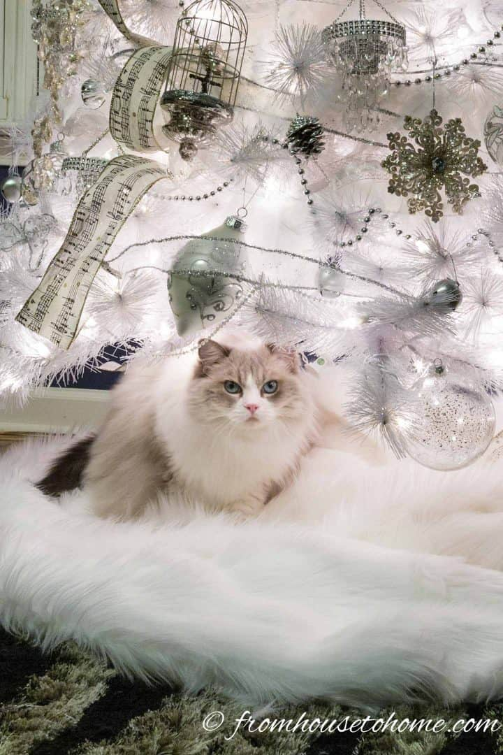 Cat sitting on white faux fur tree skirt under all white Christmas tree