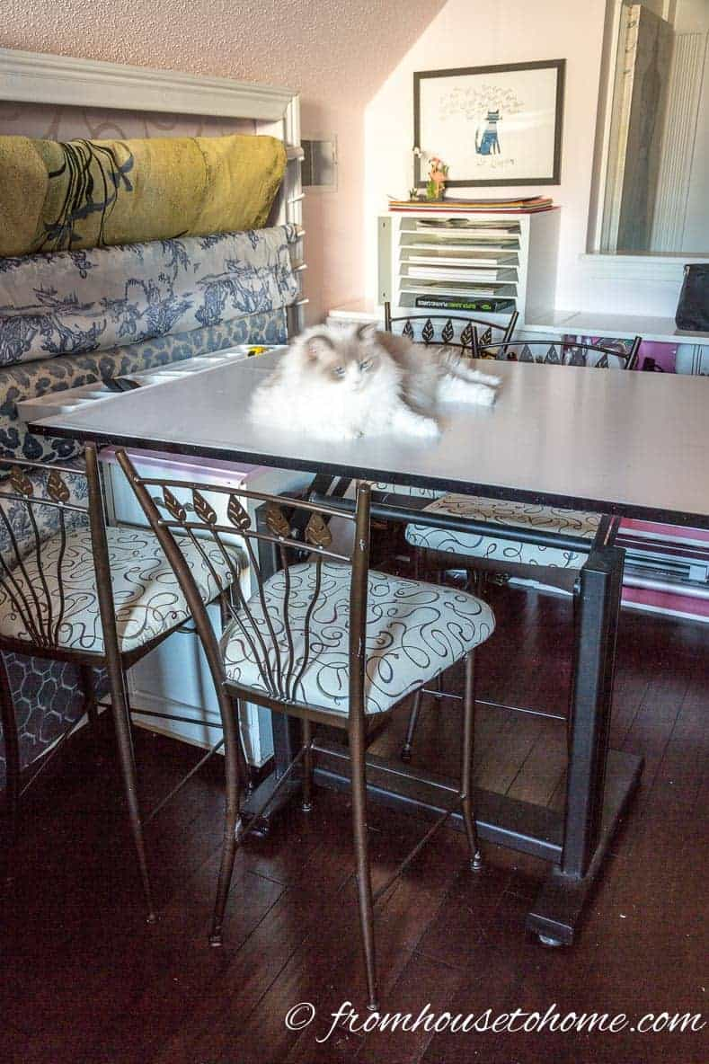 The cat prefers the table to the chairs | Home Office Design Ideas: 8 Tips For A Functional and Comfortable Room | If you are looking for some home office design ideas, these tips will give you inspiration to create a functional and comfortable workspace layout.