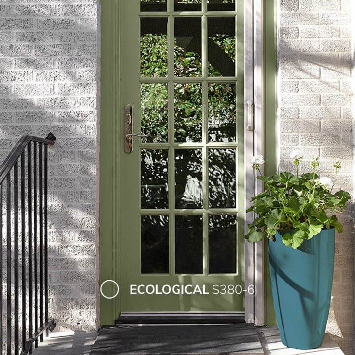 Exterior door painted with Behr Ecological