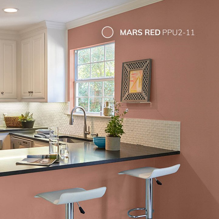 Why White Kitchen Interior Is Still Great For 2019: 2019 Paint Color Trends
