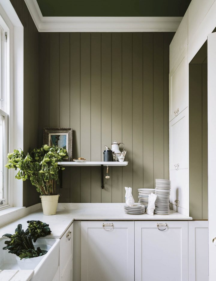 Kitchen wall painted with Farrow and Ball Treron