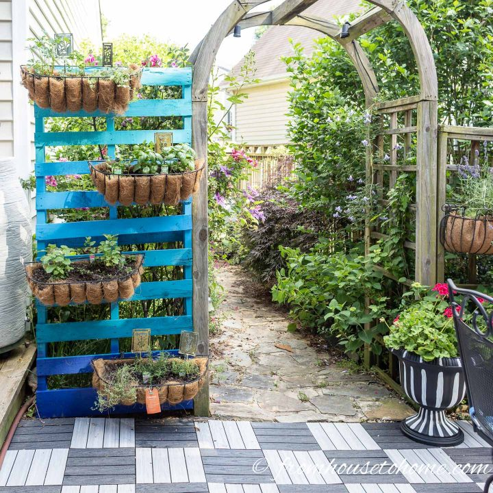 Colorful vertical herb garden beside an arbor and patio