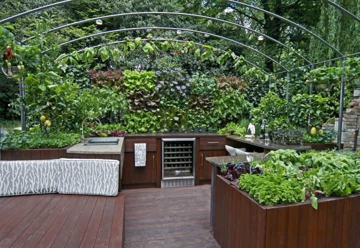 Outdoor kitchen with herbs planted close by