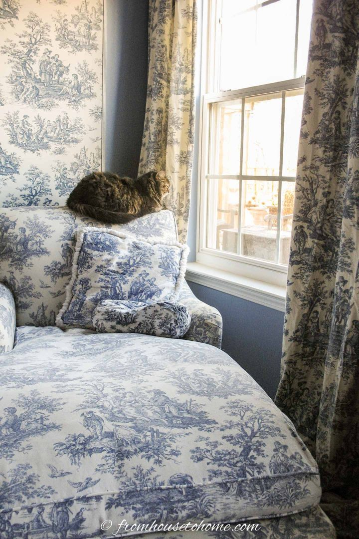 Cat on a blue and white toile chaise