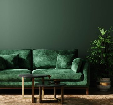 Living room with green walls and sofa